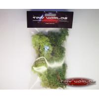 Lichen Foliage - Mixed Green - Large Bag